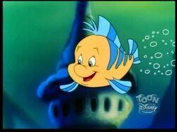 639px-Flounder