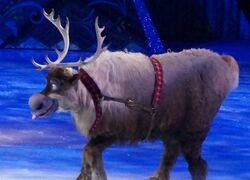 Sven Disney on ice
