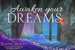 Sleeping Beauty Diamond Edition Awaken your Dreams Promotion