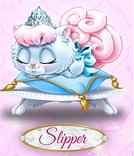 Slipper 6