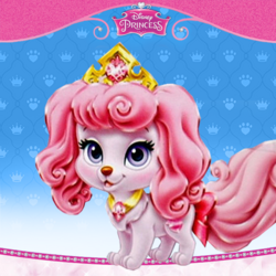 Palace Pets - Macaron