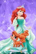 Disney-Princess-Palace-Pets-disney-princess-34879141-320-480