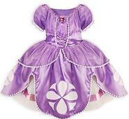 Sofia The First Halloween Costume