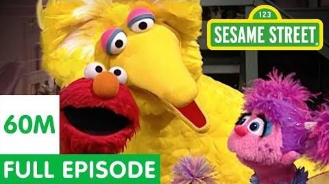 All for a Song Sesame Street Full Episode