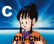 Chi-Chi (from Dragon Ball)