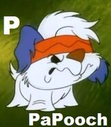 PaPooch