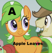 Apple Leaves