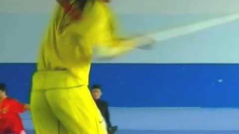 Awesome Kung Fu Display-0