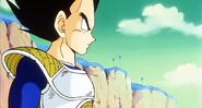 Vegeta in The Prince Fights Back