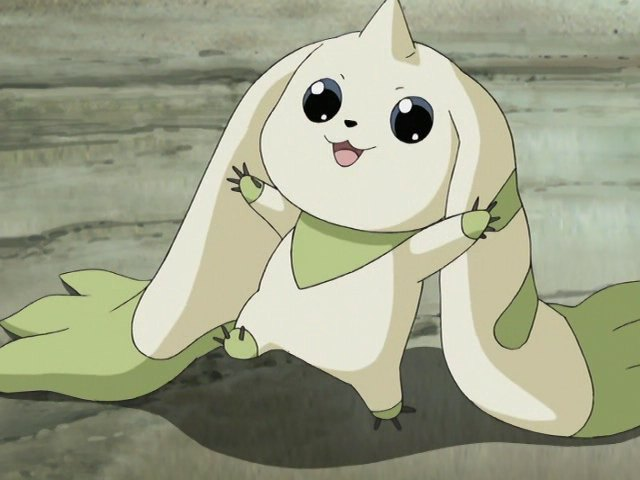 K Anime Characters Wikipedia : Terriermon tamers japanese anime wiki fandom powered