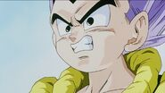 Dbz242(for dbzf.ten.lt) 20120404-16230365
