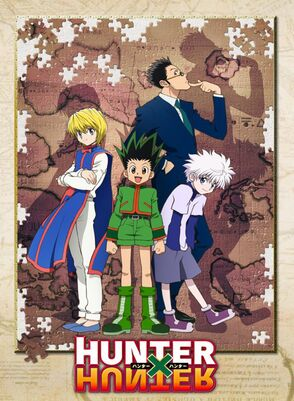 Hunter x Hunter (2011 Anime)