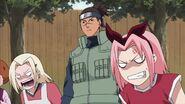 Naruto Shippuuden 176-220