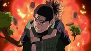 Naruto Shippuuden 178-274
