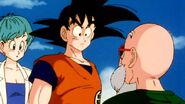 DragonballZ-Episode002ws 287