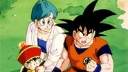 DragonballZ-Episode002ws 319