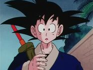 Dragonball Screenshot 0259