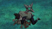 Naruto Shippuuden 215-327