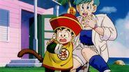 DragonballZ-Episode002ws 459