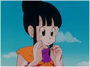 Chi Chi calling her son Gohan in DBZ Series