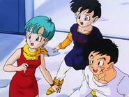 Dbz242(for dbzf.ten.lt) 20120404-16091338