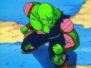 Piccolo Watching