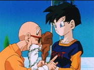 Master roshi and videl by neo sunglasses-d97cb98