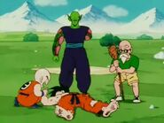Krillin and everyone