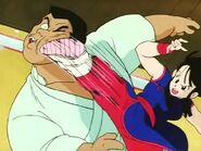Chi-chi vs peleador