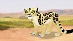 The-golden-zebra (49)
