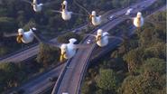 SeagullsFindingDory