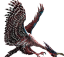 The Jub Jub Bird