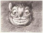 Cheshire Cat David Hall