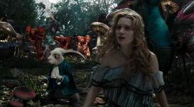 Alice-alice-kingsley-13589126-900-500