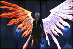 Phoenix Selhteus