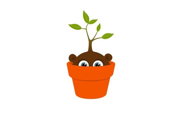 File:Planty Guy.jpg