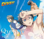Diveopcover