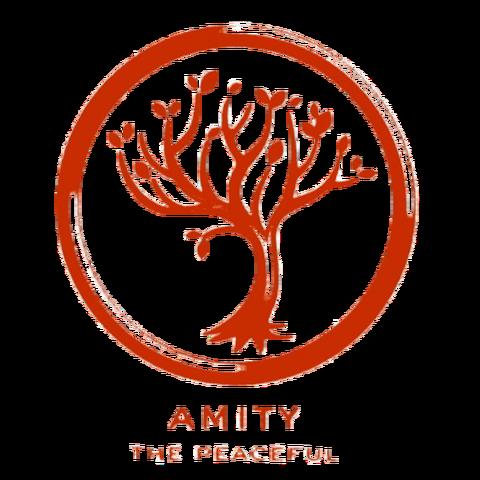 File:Amity logo.png
