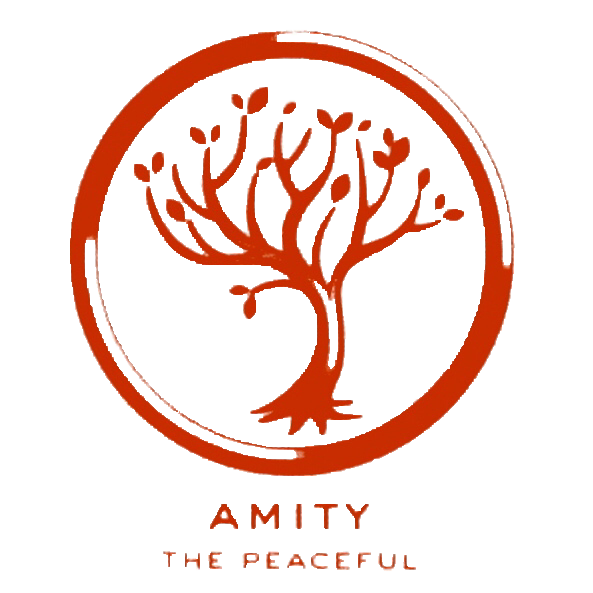 amity divergent wiki fandom powered by wikia