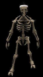 Skeleton of 2019