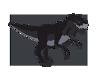 Rex Pet