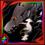 582-icon