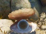 Ишмаллюск