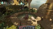 D2 Алхимический огород