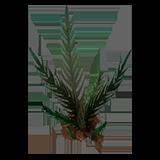 DOS2 Растение Шептун-трава