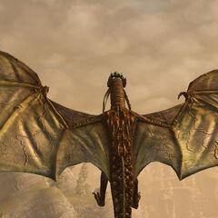Дракон игрока (персонаж-женщина)