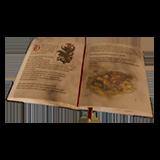 DOS2 Книга открытая