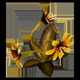 DOS2 Растение Звездная травка