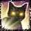 DOS2 Навык Вызов кота-питомца