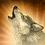 DOS Навык Вызов волка